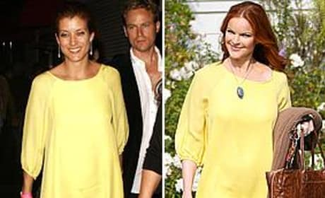 Kate Walsh, Marcia Cross