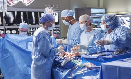 Triple Organ Transplant - Grey's Anatomy