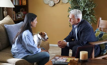NCIS Season 14 Episode 6 Review: Shell Game