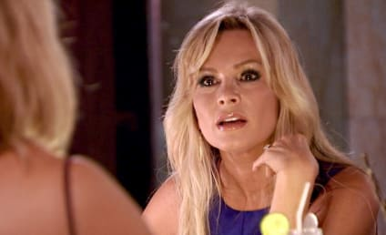 The Real Housewives of Orange County: Watch Season 9 Episode 17 Online