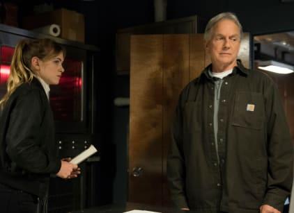 Watch NCIS Season 16 Episode 17 Online