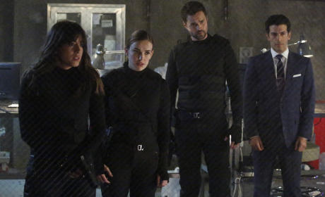 Questionable Characters - Agents of S.H.I.E.L.D. Season 2 Episode 19
