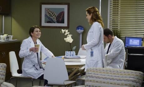 Playing Nice - Grey's Anatomy