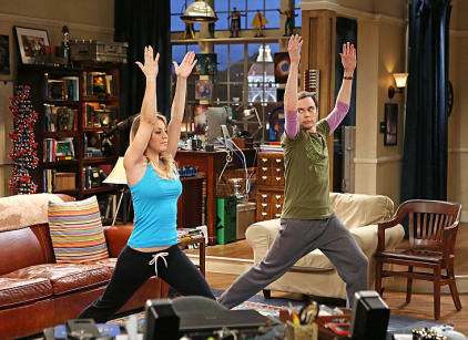 Watch The Big Bang Theory Season 7 Episode 13 Online
