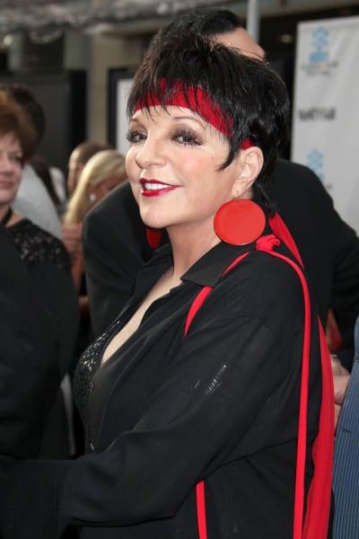 Liza Minnelli Image