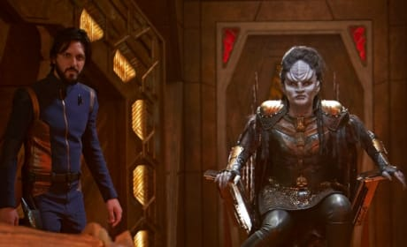 Back in the Picture - Star Trek: Discovery Season 2 Episode 14