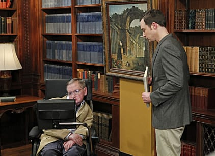 Watch The Big Bang Theory Season 5 Episode 21 Online