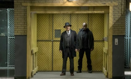 The Blacklist Season 4 Episode 14 Review: The Architect