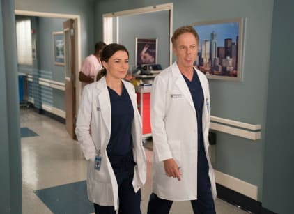 Watch Grey's Anatomy Season 14 Episode 18 Online