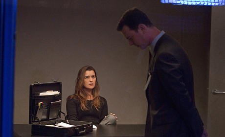 Ziva Interrogated