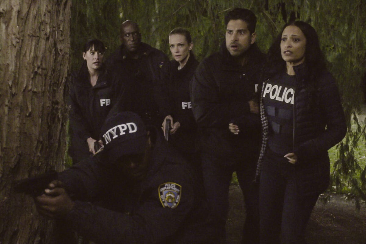 Criminal Minds Season 13 Episode 12 Review Bad Moon On The Rise