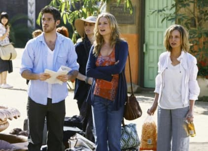 Watch Brothers & Sisters Season 3 Episode 24 Online