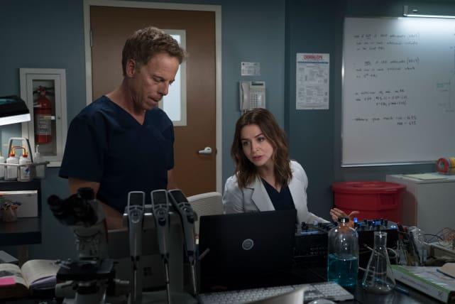 Koracik is Back - Grey's Anatomy Season 15 Episode 1