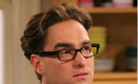 The Big Bang Theory's Stars -- Then and Now