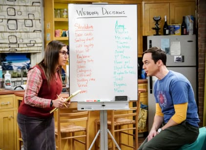 Watch The Big Bang Theory Season 11 Episode 10 Online