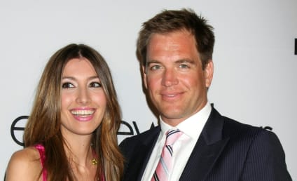 Michael Weatherly, Wife Welcome Baby Girl!