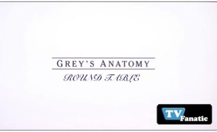 "Grey's Anatomy Round Table: ""Blink"""