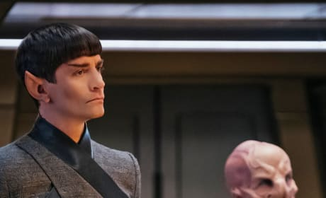 Advising the True Captain - Star Trek: Discovery Season 1 Episode 15