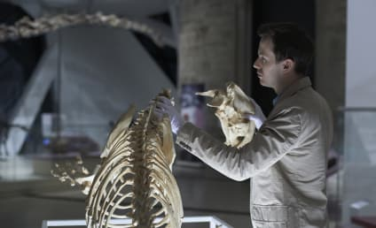 Hannibal: Watch Season 2 Episode 9 Online