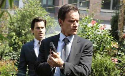 Tim DeKay to Guest Star on Marvel's Agents of S.H.I.E.L.D.