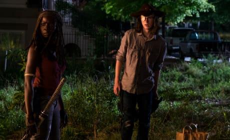 Outside - The Walking Dead Season 8 Episode 8