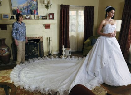 Watch Jane the Virgin Season 3 Episode 20 Online