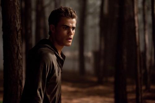 Stefan in the Woods