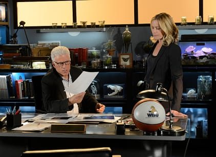 Watch CSI Season 13 Episode 19 Online