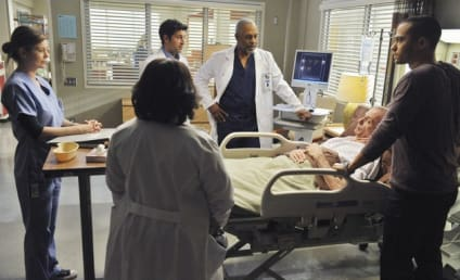 """Grey's Anatomy Review: """"Perfect Little Accident"""""""