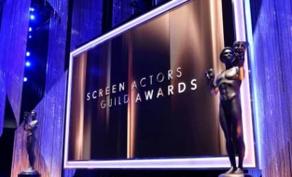 SAG Awards 2017: Who Took Home the Gold?