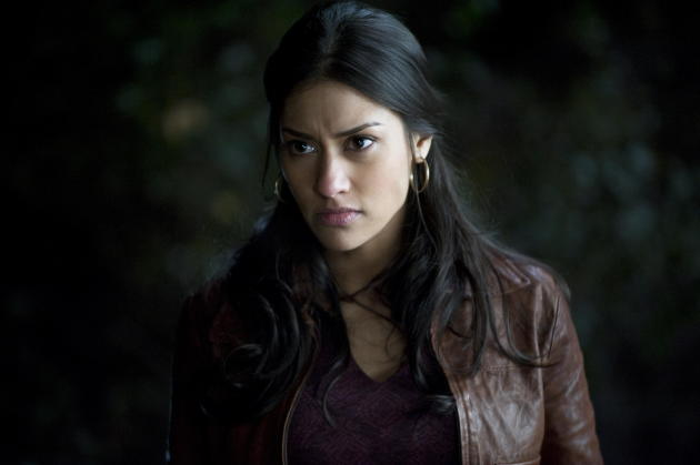 Janina Gavankar on True Blood