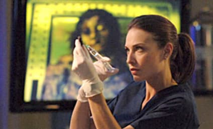 Claire Forlani to Reprise Role on CSI: NY