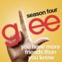 Glee cast you have more friends than you know