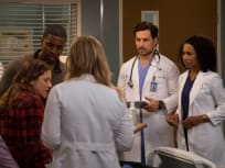 Grey's Anatomy Season 14 Episode 22