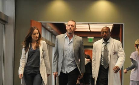 House, Foreman and Thirteen