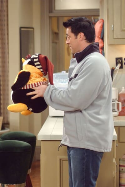 Joey and Hugsy - Friends