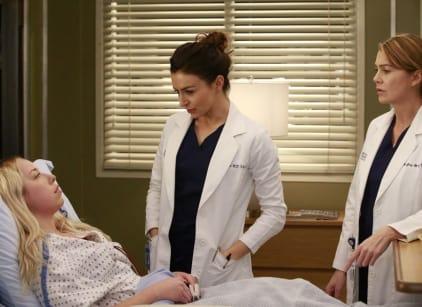 Watch Grey's Anatomy Season 12 Episode 12 Online