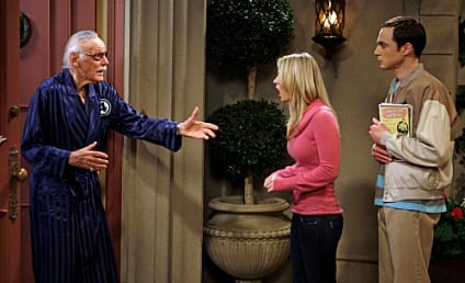 """The Big Bang Theory Review: """"The Excelsior Acquisition"""""""