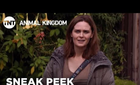 Animal Kingdom: Emily Deschanel's Angela Has a Frosty Reunion with Smurf - WATCH