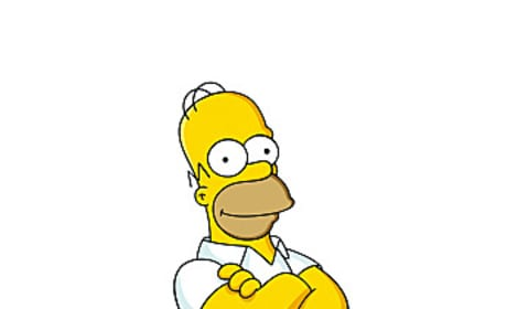 Homer Simpson Picture