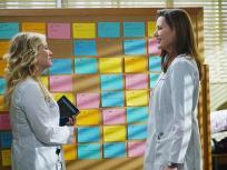 Grey's Anatomy Season 11 Episode 13
