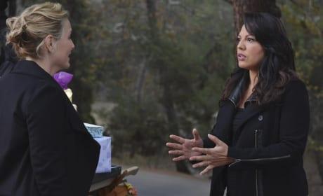 Arizona and Callie's Future