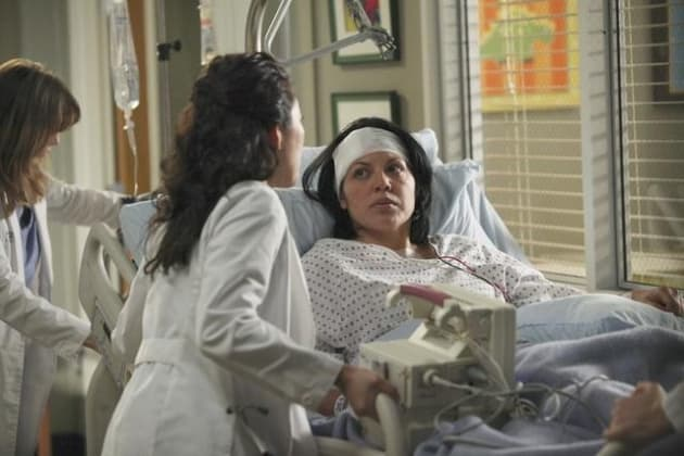 Doctor Callie Torres Pic