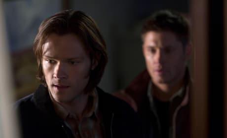 Supernatural Still