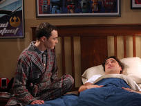 The Big Bang Theory Season 8 Episode 9