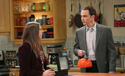 13 Things Every The Big Bang Theory Fan Knows to Be True