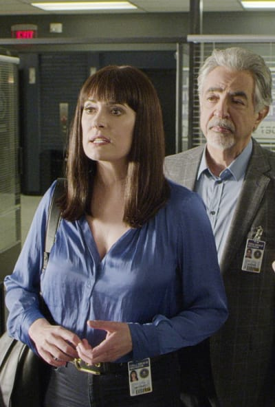 Sage Advice - Criminal Minds Season 15 Episode 7