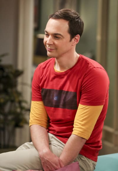 Sheldon Loves to Be Admired - The Big Bang Theory Season 10 Episode 24