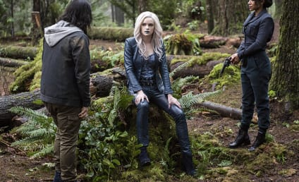 Watch The Flash Online: Season 2 Episode 14