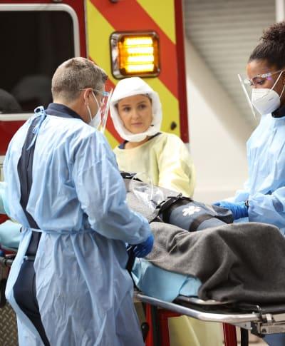 Bickering Couple - tall  - Grey's Anatomy Season 17 Episode 11
